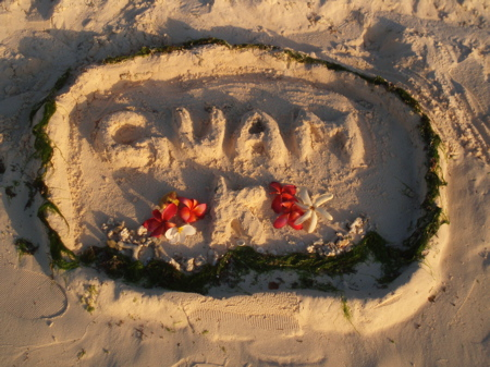 Das haben wir so am Stand im Sand gefunden... ich dachte das ist ein schönes Intro-Bild.