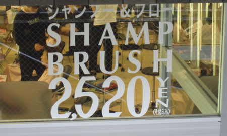 Shamp Brush
